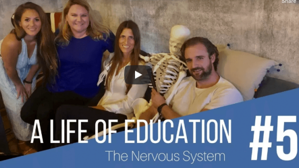 #5 The Nervous System