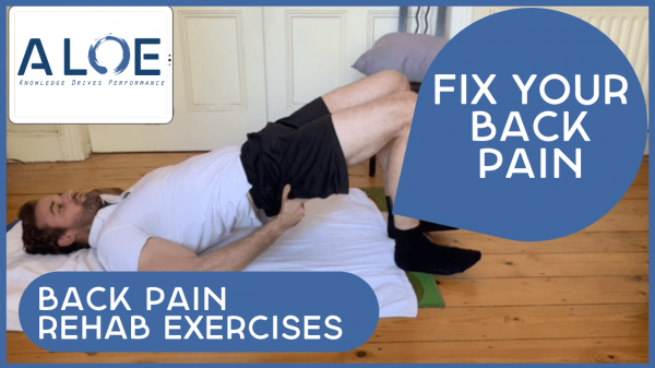 Back Pain Rehab Exercises at Home