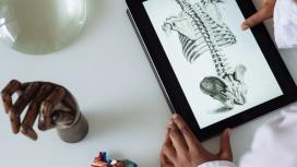 Hip Stability & Anatomy